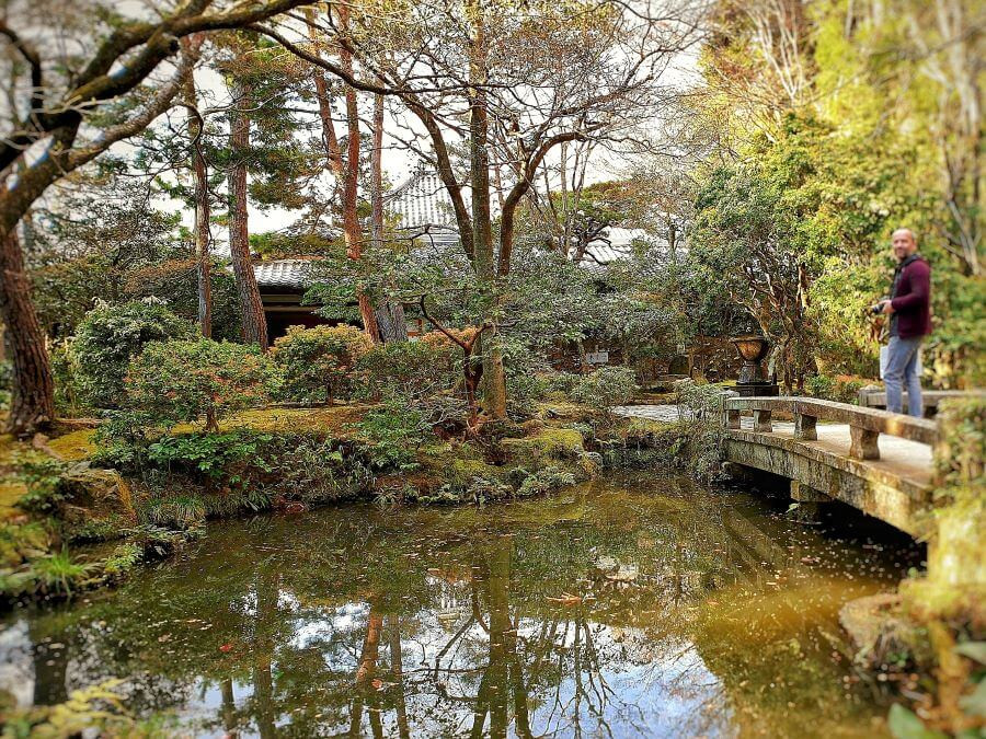 Koi pond at the centre of the garden at Honen-in temple in Kyoto.
