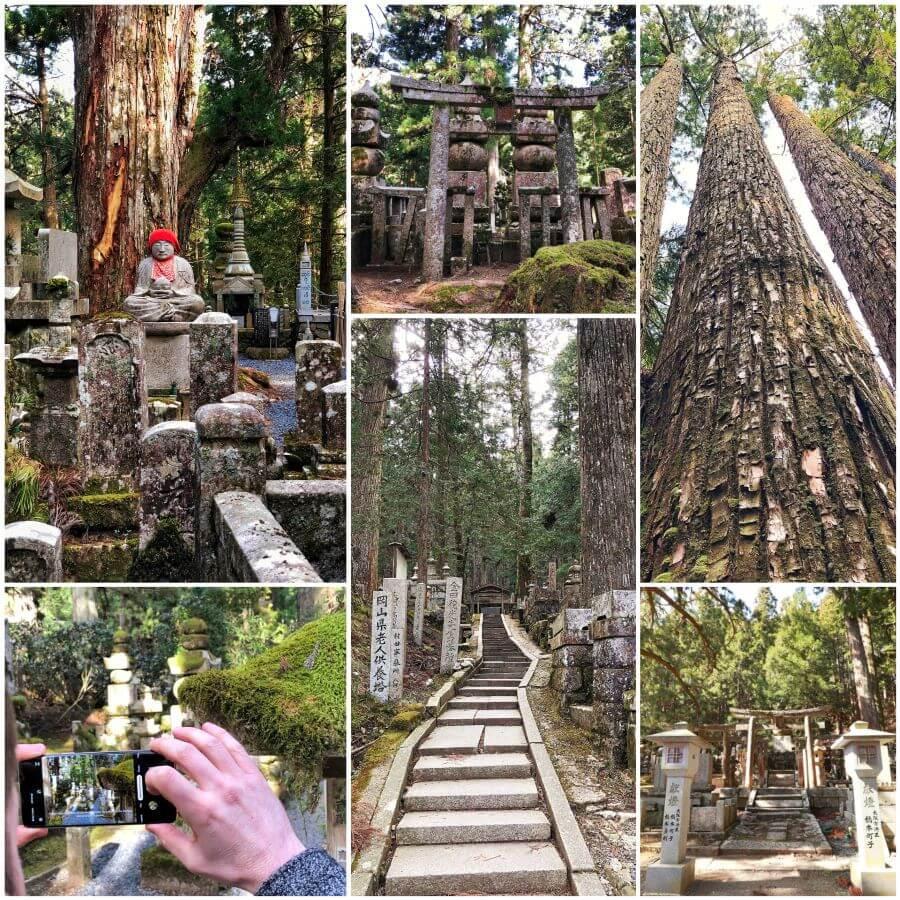 Torii gates and buddha in Koyasan's Okunoin cemetery, Japan