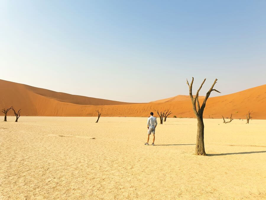 Dunes and desiccated trees in Deadvlei near Sossusvlei, Namibia