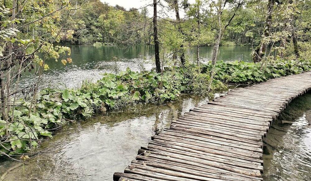The Upper Lakes in Plitvice National Park, Croatia