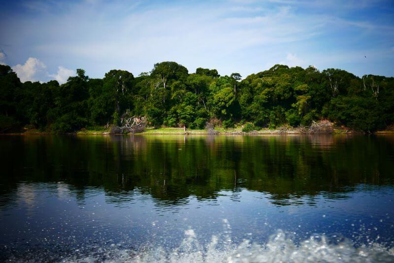 Amazon river boat cruise with Anavilhanas jungle lodge