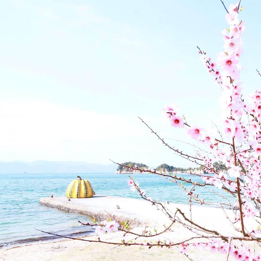 Yayoi Kusama's famous yellow pumpkin on Naoshima Island