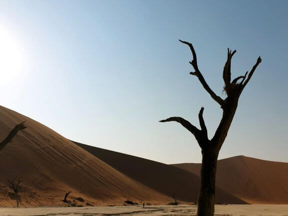 The Big Daddy dune at Sossusvlei in Namibia