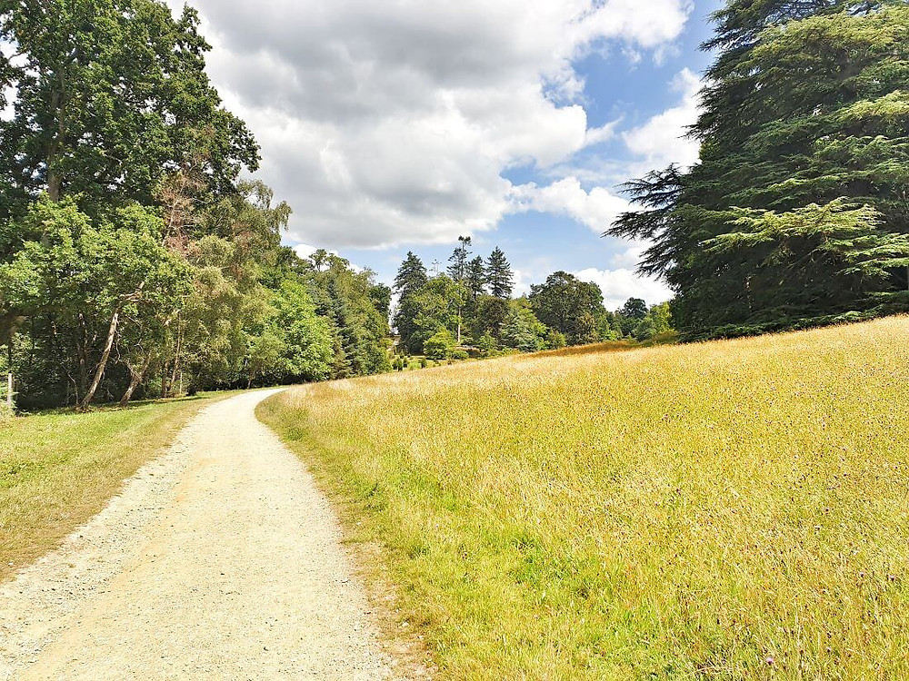 Grasslands and forest paths at Wakehurst botanical gardens in West Sussex
