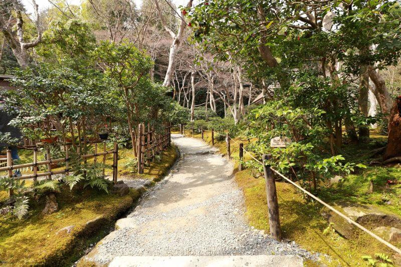 Lovely example of a moss garden - we review the Gio-ji temple in Kyoto