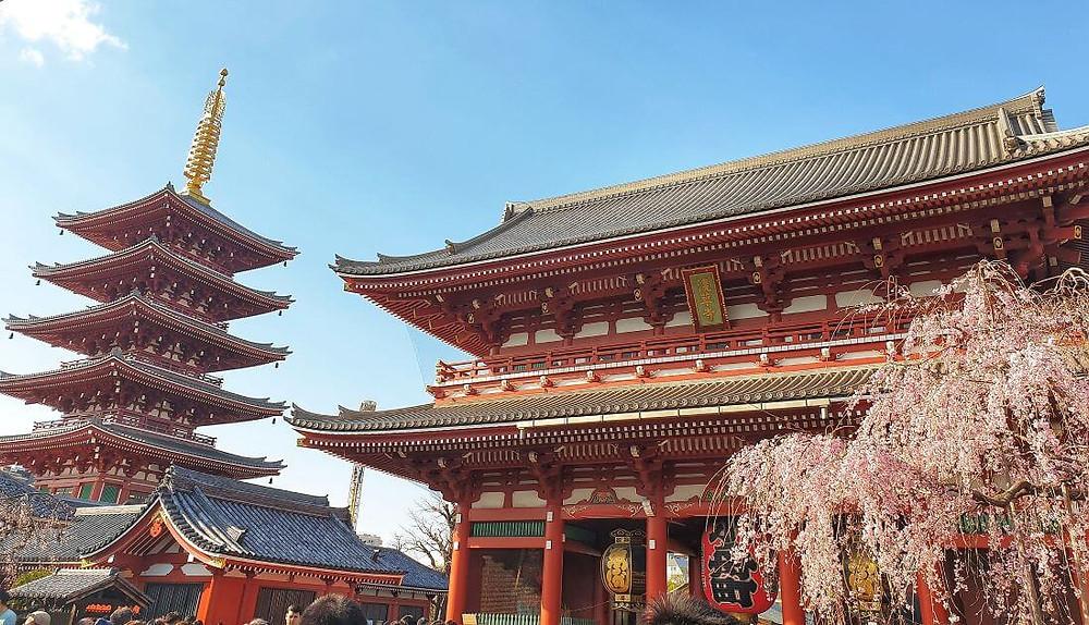 Visiting Sensoji temple during a 5 day Tokyo itinerary