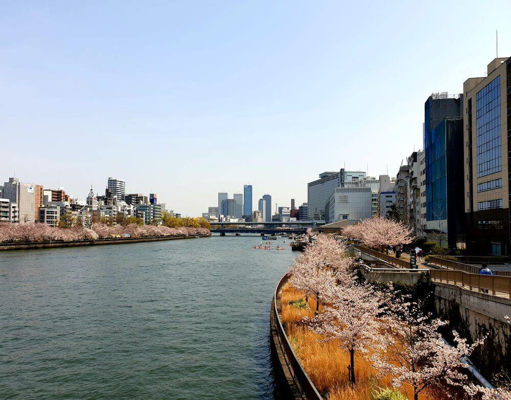 A view of Osaka, during a 3 week itinerary of Japan