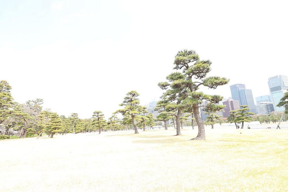Kokyo Gaien National Park at the Tokyo Imperial Palace in Japan