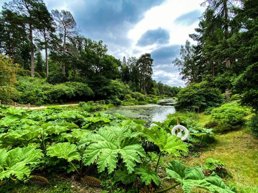 Leonardslee Lakes & Gardens in Horsham, West Sussex