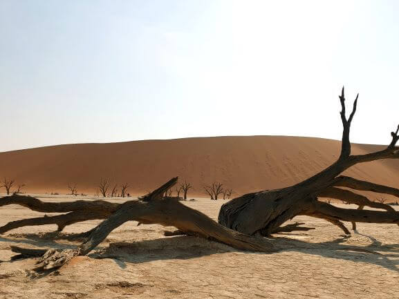Deadvlei dunes images in Namibia