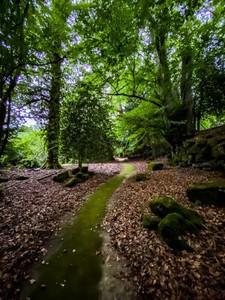 Garden path walk at Alexander House hotel in Sussex, England