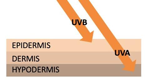 UV-SKIN.jpg
