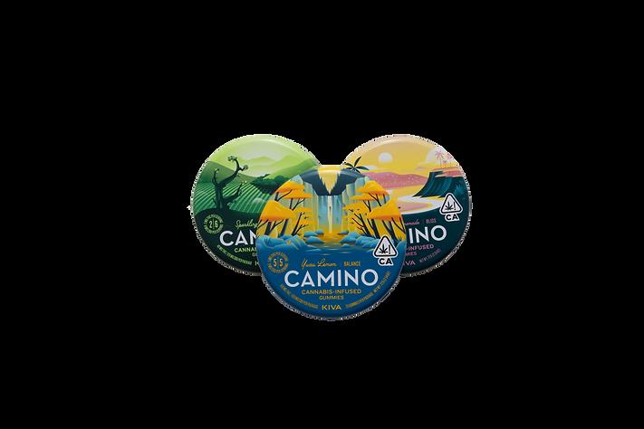 CaminoTop.png