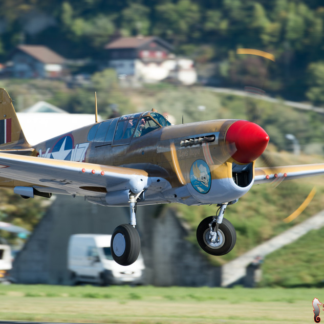 "Curtiss P-40F Warhawk 'Lees Hope"""