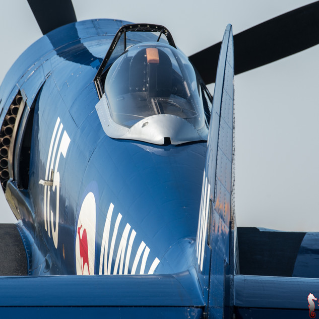 Hawker Sea Fury - F-AZXJ