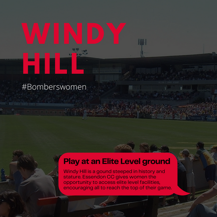 Windy Hill.png