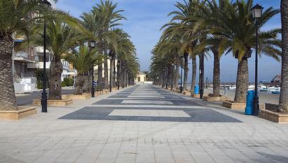 Palm trees along a beach promenade in Lo