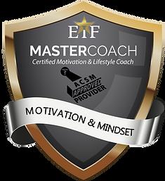EiFMaster Coach