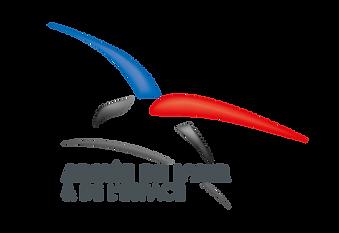 Logotype_Armée_de_l'air_et_de_l'espace.