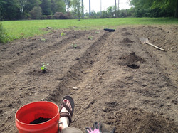 time to get planting