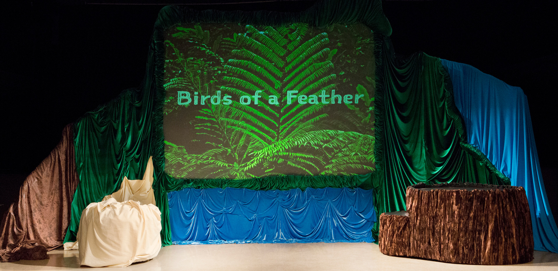 Birds of a Feather Set