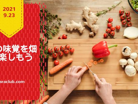 【畑通信】秋の味覚を畑で楽しもう~2021.09.23~