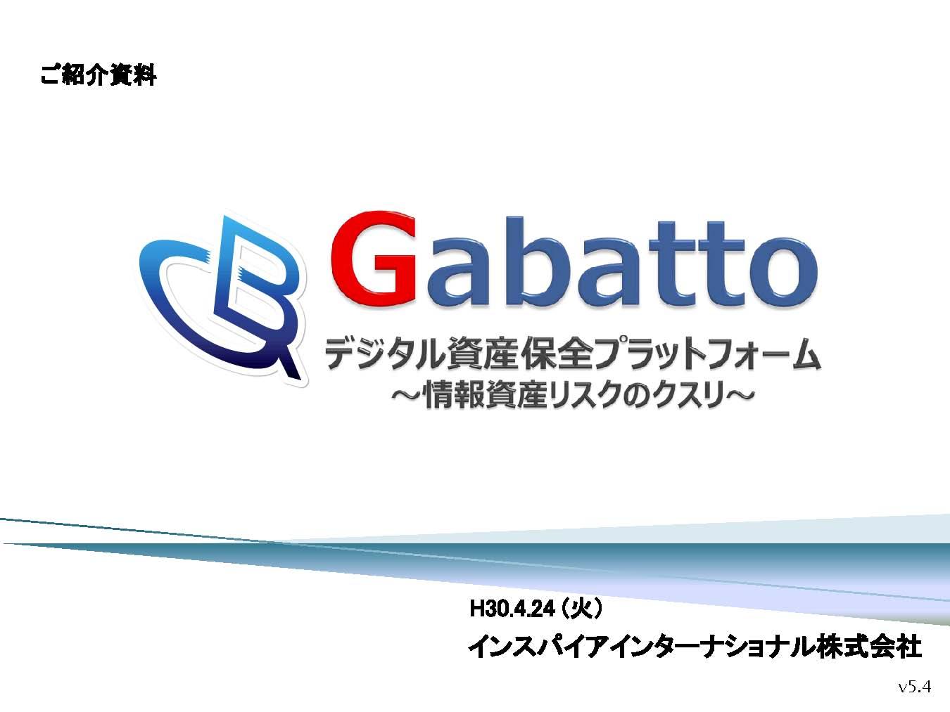 gabatto_intro_ページ_01