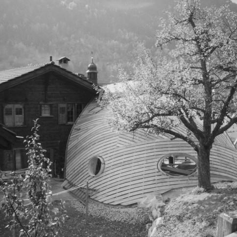 Ökologischer Schalenbau