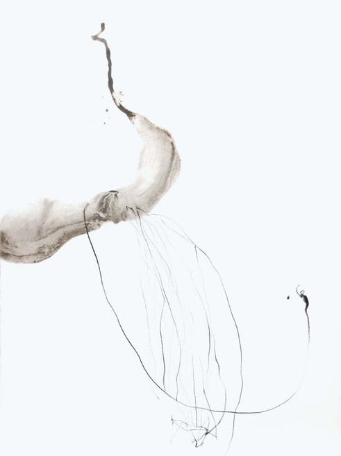 Metamorfosi di una libellula