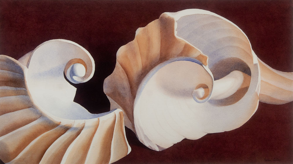 Whelk-Shard-Volutes.jpg