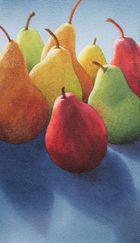 Pears Backlit XI