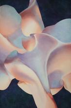 Vertebra in Flower