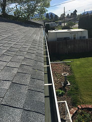 Gutter/Eavestrough Cleaning