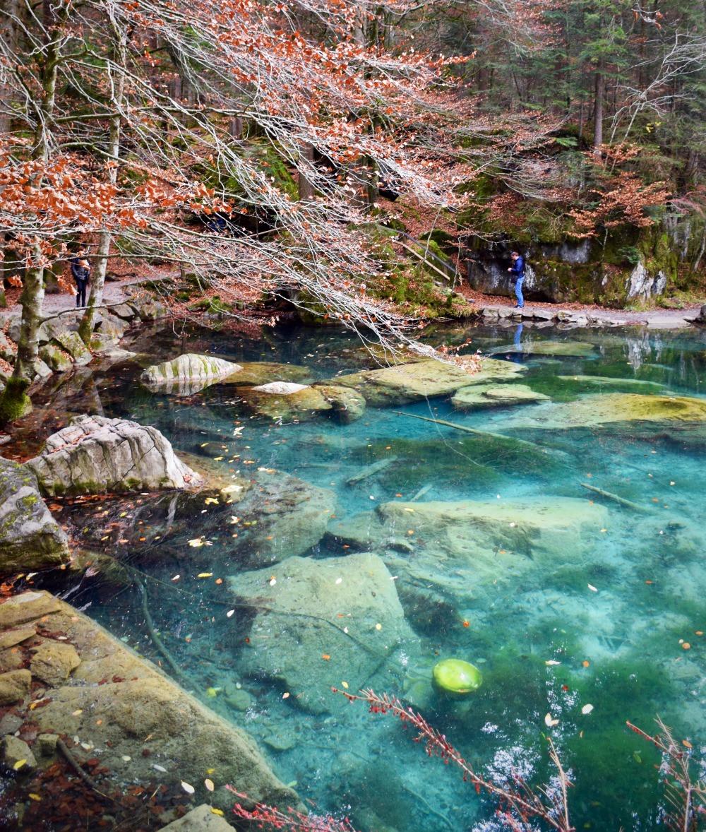 Nature Park & Lake Blausee - Kandersteg / Blausee - Family of 5 Switzerland