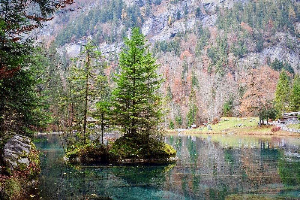 Nature Park & Lake Blausee - Kandersteg / Blausee - Family of 5 Switzerland