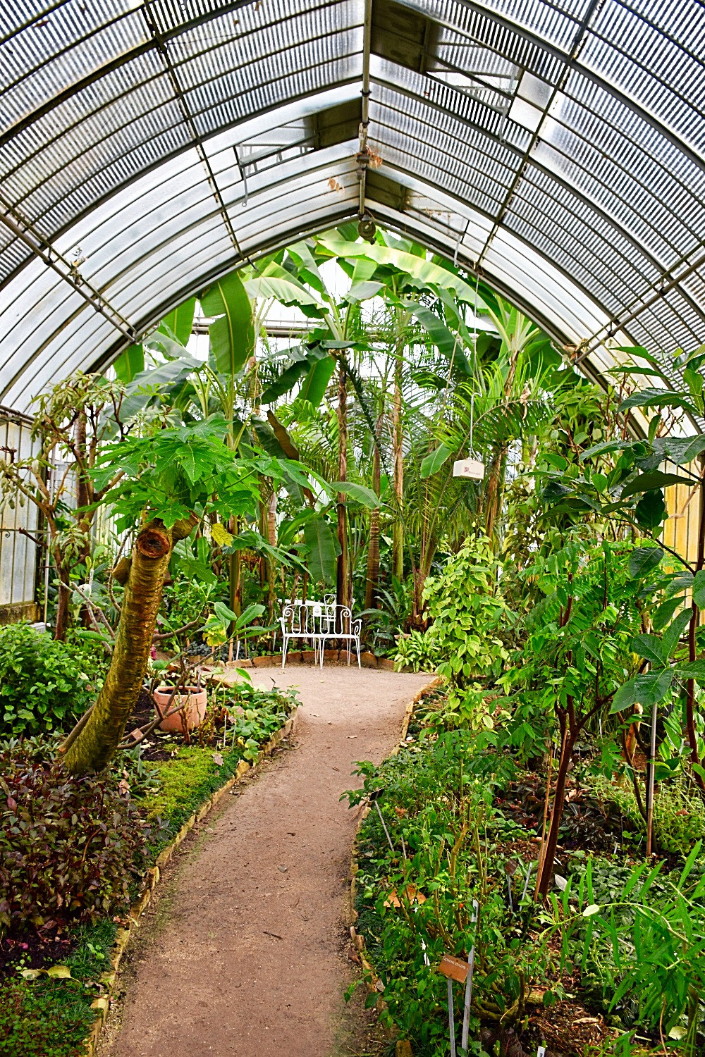 The Conservatory and Botanical Garden of the city of Geneva (GE)