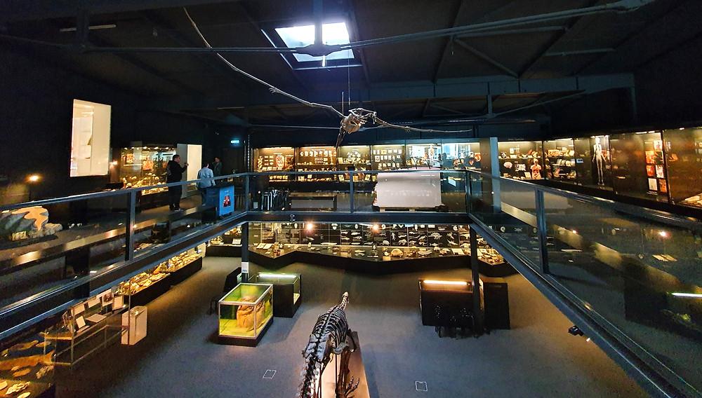 Kulturama / Museum des Menschen | Zürich Swiss Family Travel Blog