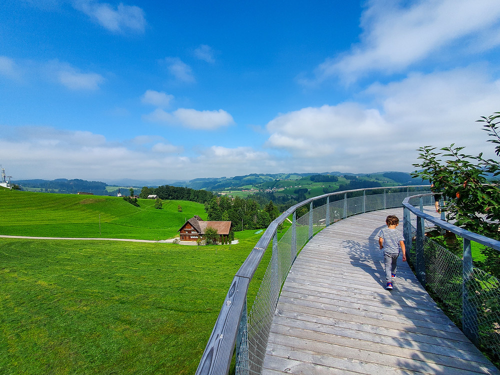 Treetop path Neckertal | Mogelsberg | Switzerland Family Travel Blog