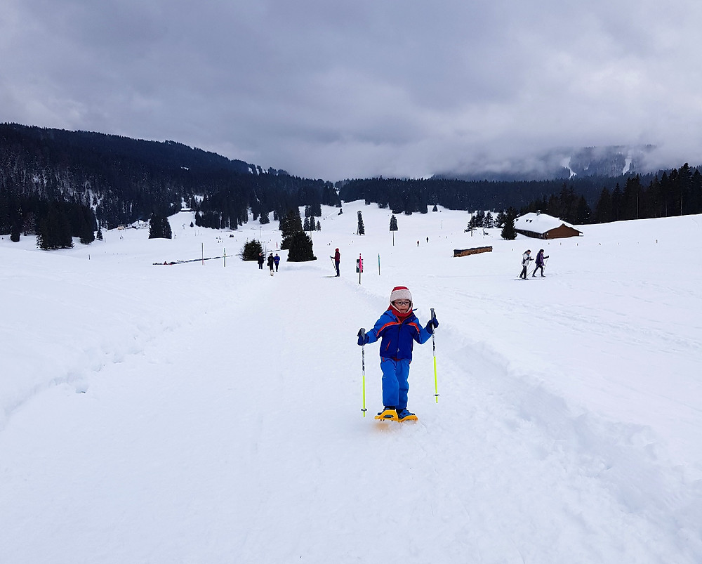 Snowshoes and winter hike - La Givrine