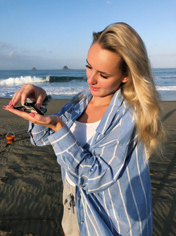 Releasing the baby turtles