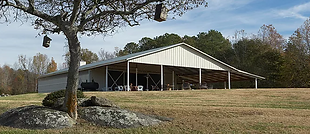 Red Boot Ranch, Clover