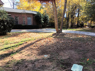 Residential property area in Rock Hill, SC after stump have been grinded and removed