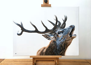 Bellowing Stag on Easel.jpg