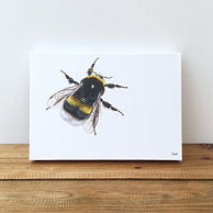 Bee | bumblebee | bee painting | bee print | bee art | bee gift | bee decor | bee design | bumblee painting | bumblebee art | bumblebee design | bumblebee print | bees | bee picture | bumblebee picture