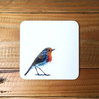 Robin Coaster