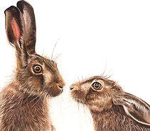 Kissing Hares - Olivia de Rivaz_edited.j