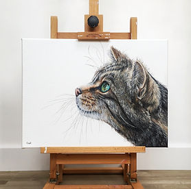 scottish wildcat | wildcat painting | wildcat art | wildcat design | wildcat picture | cat art | cat painting | cat print | cat picture | cat gift | cat gifts | whiskers | cat face | cat portrait | cat eyes | cats eyes | tabby cat | cat canvas | cat original art | feline art | feline artwork | feline artist | feline decor | feline wall art | cat wall art | cat decoration | cat lovers | cats