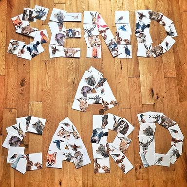 Send A Card.jpg