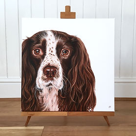 springer spaniel dog painting | springer spaniels | springer spaniel art | springer art | springer spaniel painting | springer painting | spaniel art | spaniel painting | springer spaniel print | springer print | spaniel print | springer spaniel picture | springer picture | spaniel picture | spaniel wall art | spaniel decor | spanial art print | springer spaniel canvas | dog painting | dog print | dog art | dog design | dog picture | canine art | canine picture | canine print | canine design | canine wall decor | canine wall art | canine art print | spaniel lovers | spaniel gifts | springer gifts | springer spaniels