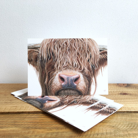 Highland Cow Notecards